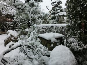 成人の日雪景色