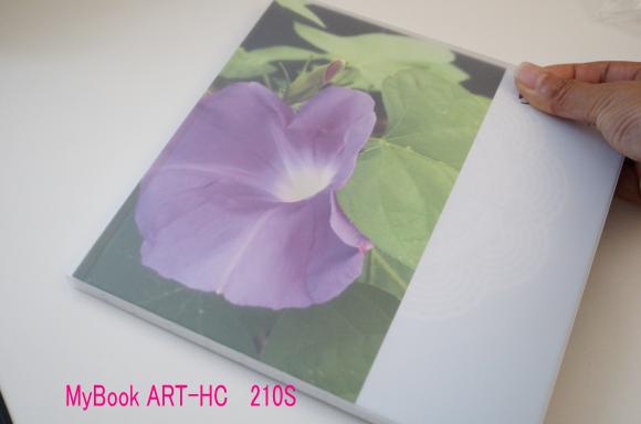 MyBook ART-HC  210S