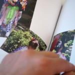 【七五三】アスカネットさんのフォトブック「MYBOOK」を作ってみよう♪