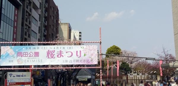 隅田川桜まつり