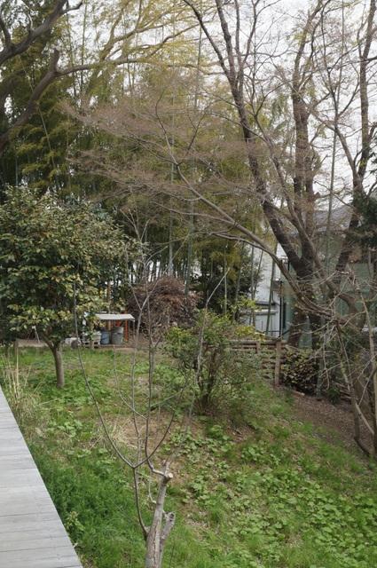 武相荘 散策路5