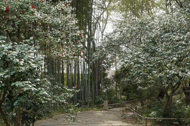武相荘庭園