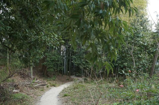 武相荘 散策路1