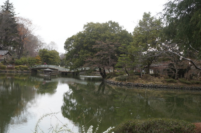 薬師池のイメージ