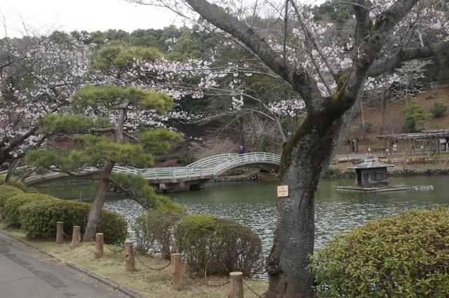 町田薬師池公園