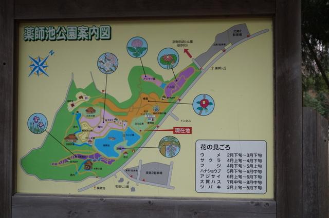 薬師池公園の案内図