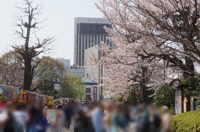 浅草寺の屋台