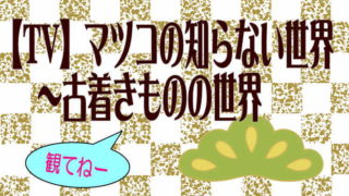 【TV】マツコの知らない世界~古着きものの世界