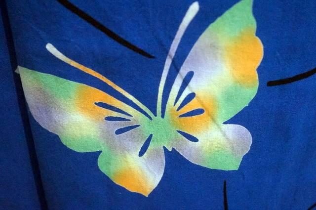 ローケツ蝶々